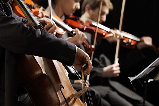 musicisti-professionisti-1